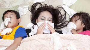 Textilreinigung Dr-Wasch entfernt alle Pollen and den Textilien